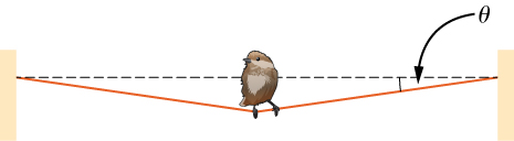 Figure shows a bird sitting on a wire that is fixed at both ends. The wire sags with its weight, forming an angle theta with the horizontal on either side.