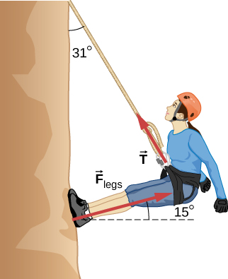 A mountain climber is drawn leaning away from the rock face with her feet against the rock face. The rope extends up from the climber at an angle of 31 degrees to the vertical. The climbers legs are straight and make an angle of fifteen degrees with the rock face. The force vector F sub T starts at the harness and points away from the climber, along the rope. The force vector F sub legs starts at climber's feet and points away from the rock, parallel to her legs.