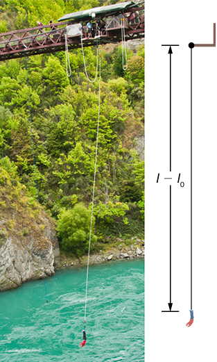 A photograph of a person bungee jumping from a bridge above a river is accompanied by an illustration of the situation. The illustration shows the jumper at the his lowest position, and the bungee stretched by a distance l minus l sub zero.