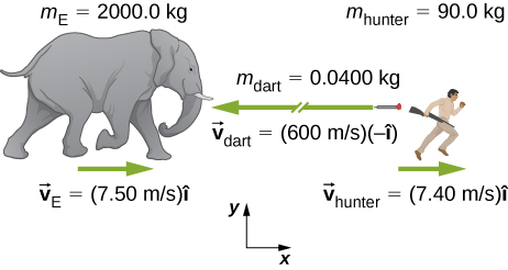A drawing of an elephant, on the left, and hunter, on the right. An x y coordinate system is shown, with positive x to the right and positive y up. The elephant is labeled with m E = 2000.0 k g, and vector v E = 7.50 meters per second times I hat. An arrow above the v E vector points to the right. The hunter is labeled with m hunter = 90.0 k g, and vector v hunter = 7.40 meters per second times I hat. An arrow above the v hunter vector points to the right. Between the hunter and elephant is a dart with a long arrow pointing to the left drawn near it and labeled vector v dart = 600 meters per second times minus I hat, and m dart = 0.0400 k g.