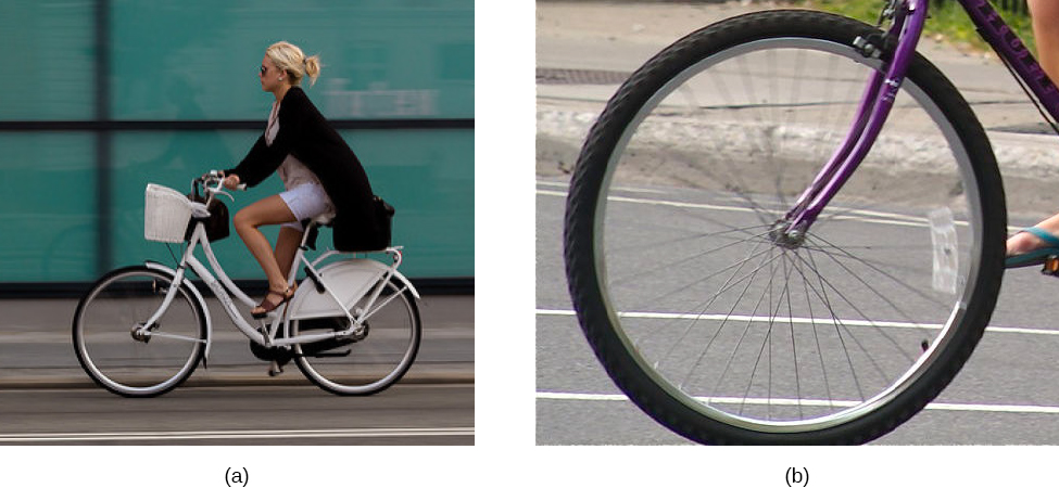 Figure a is a photograph of a person riding a bicycle. The camera followed the bike, so the image of the bike and rider is sharp, the background is blurred due to bike's motion. Figure b is a photograph of a bicycle wheel rolling on the ground, with the camera stationary relative to the ground. The wheel and spokes are blurred at the top but clear at the bottom.