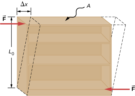 Figure is a schematic drawing of an object under shear stress: Two antiparallel forces of equal magnitude are applied tangentially to opposite parallel surfaces of the object. As the result, the object is transformed from the rectangle to the parallelogram, shape. While the height of the object remains the same, top corners move to the right by the Delta X.