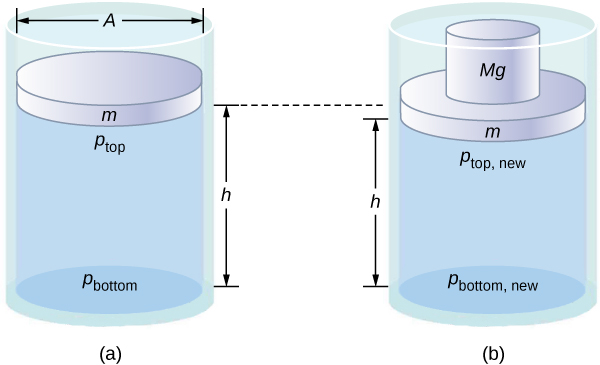 Figure A is a schematic drawing of a cylinder filled with fluid and opened to the atmosphere on one side. A disk of mass m and surface area A identical to the surface area of the cylinder is placed in the container. Distance between the disk and the bottom of the cylinder is h. Figure B is a schematic drawing of the cylinder with an additional disk of mass Mg placed atop mass m causing mass m to move lower.