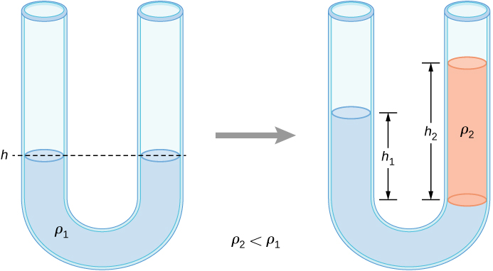 Left figure shows a U-tube filled with a liquid. The liquid is at the same height at both sides of the U-tube. Right figure shows a U-tube filled with two liquids of different densities. The liquids are at different heights on both sides of the U-tube.
