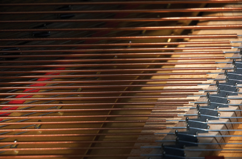 A close up photo of the strings in a piano