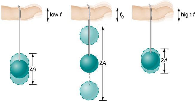 The figure shows three pictures of a horizontal viewed a string suspended from a finger, with a ball tied to its lower end. In the first figure, the finger moves up and down with low frequency f, and the ball moves up and down some distance away from its equilibrium height, the displacement shown in the figures as faded shades of the ball and the equilibrium position as a darker image. In the second figure the finger moves up and down with frequency f sub zero and the movement of the ball is much larger than in the first. In the third figure the finger moves up and down with a high frequency f, and the movement of the ball is smaller than in the first figure. In all the three figures the total distance from the lowest to highest position of the ball is indicated as 2 A.