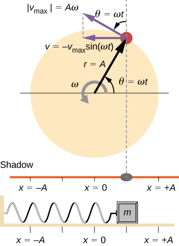 A comparison of the angular location of a peg on a rotating disk, the position of its shadow, and the position of a mass oscillating on a horizontal spring. The disk has radius r = A and rotates counterclockwise with angular velocity omega. The angular position of the peg, theta, is zero when the peg is directly to the right of the center of the disk and is equal to omega t at the time shown. The linear velocity of the peg is shown as a vector tangent to the circle at the edge of the disk. It has magnitude v sub max which is equal to A omega. Its x component is a horizontal leftward vector – v sub max times sine omega t. The peg casts a shadow on a horizontal line. The spring is attached to a wall on the left and a mass on the right. The position of the mass and the shadow is x, where x=0 is directly below the center of the disk, x=-A is directly below the left edge of the disk, and x=+A is directly below the right edge of the disk. In the figure, the peg is in the first quadrant. Its shadow and the mass are both at a position x between 0 and plus A (it appears to be at x = A/2 in the figure.)