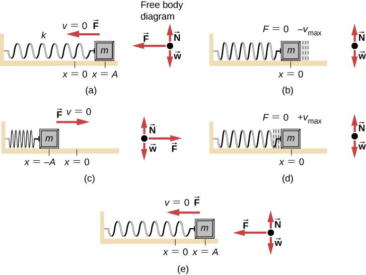 15 1 simple harmonic motion university physics volume 1. Black Bedroom Furniture Sets. Home Design Ideas
