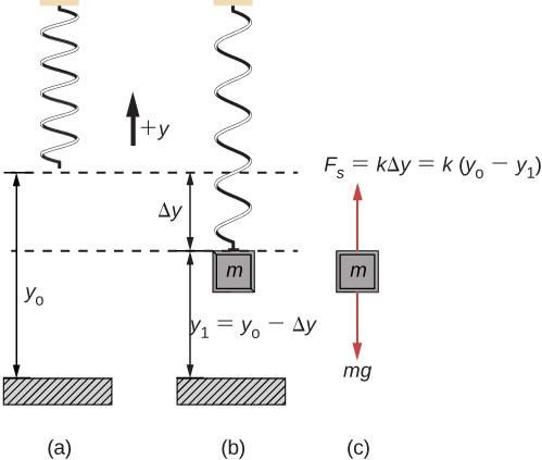 15 1 Simple Harmonic Motion | University Physics Volume 1