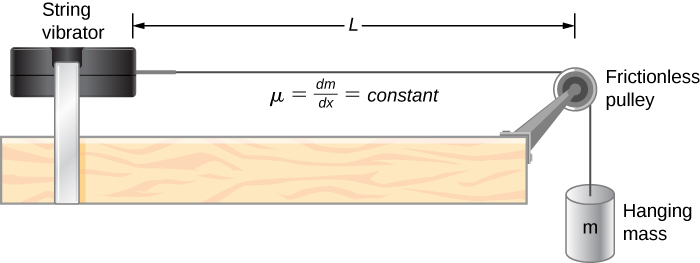 A string vibrator is shown on the left of the figure. A string is attached to its right. This goes over a pulley and down the side of the table. A hanging mass m is suspended from it. The pulley is frictionless. The distance between the pulley and the string vibrator is L. It is labeled mu equal to delta m by delta x equal to constant.