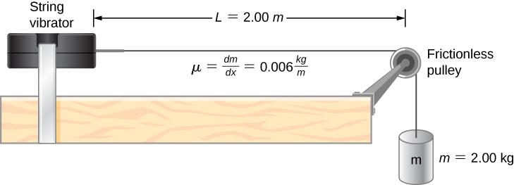 A string vibrator is shown on the left of the figure. A string is attached to its right. This goes over a pulley and down the side of the table. A hanging mass m = 2 kg is suspended from it. The pulley is frictionless. The distance between the pulley and the string vibrator is L = 2 m. It is labeled mu equal to delta m by delta x equal to 0.006 kg per m.