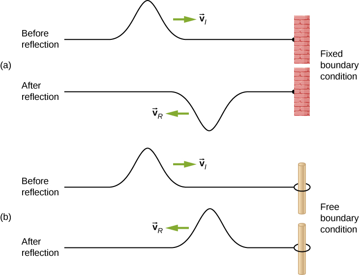 Figure a shows two figures of a string attached to a rigid support at the right. The top string is labeled before reflection. A pulse formed at the top of the string propagates towards the right with velocity v subscript i. The bottom string is labeled after reflection. A pulse formed at the bottom of the string propagates towards the left with velocity v subscript R. Figure b shows two figures of a string attached to a ring that is passed through a pole on the right. The top string is labeled before reflection. A pulse formed at the top of the string propagates towards the right with velocity v subscript i. The bottom string is labeled after reflection. A pulse formed at the top of the string propagates towards the left with velocity v subscript R.