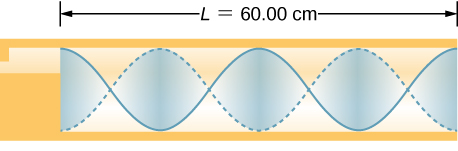 Picture is a diagram of the wave in the 60 centimeter long tube. There are two wavelengths in a tube. The maximum air displacements are at the ends of the tube.