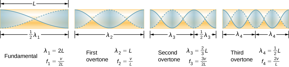 Picture is a diagram of the fundamental and three lowest overtones for a tube closed at one end. Fundamental has half of its wavelength in a tube. First overtone has one of its wavelength in a tube, second overtone has one and a half of its wavelength in a tube, third overtone has two of its wavelength in a tube. All have maximum air displacements at both ends of a tube.