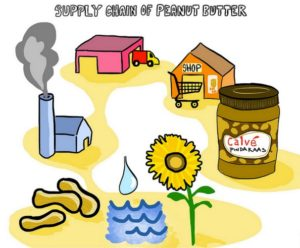 Graphic showing the peanut butter supply chain.