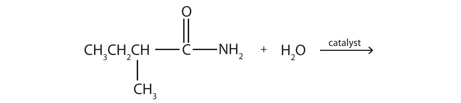 15 17 Chemical Properties of Amides: Hydrolysis | The Basics