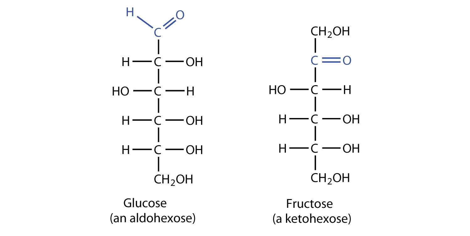 10 Difference Between Aldose And Ketose Sugar (With
