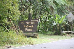 """foto mostrando un letrero que dice en inglés """"Leaving El Yunque National Forest"""""""