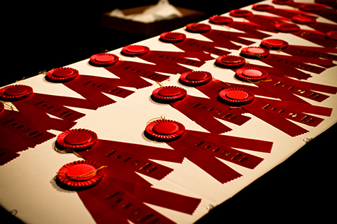 Several red winner's ribbons lie on a white table.