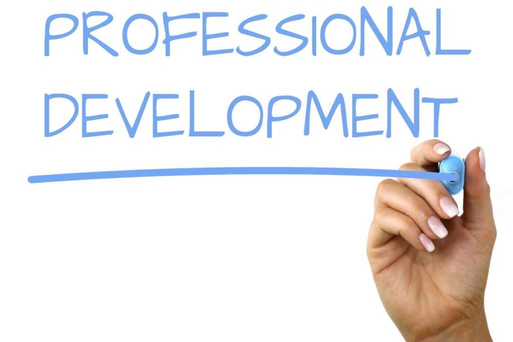 Professional Development Banner