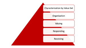 Characterization by Value Set Organization Valuing Responding Receiving