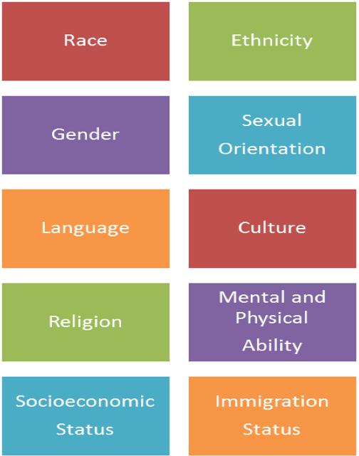 Race, Ethnicity, Gender, Sexual Orientation, Language, Culture, Religion, Mental and Physical Ability, Socioeconomic Status, Immigration Status