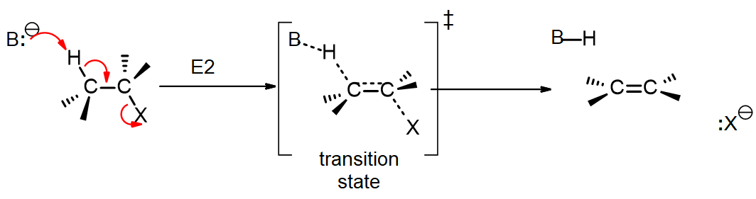A base B- attacks the beta hydrogen of an alkyl halide, forming a double bond and expelling the leaving group