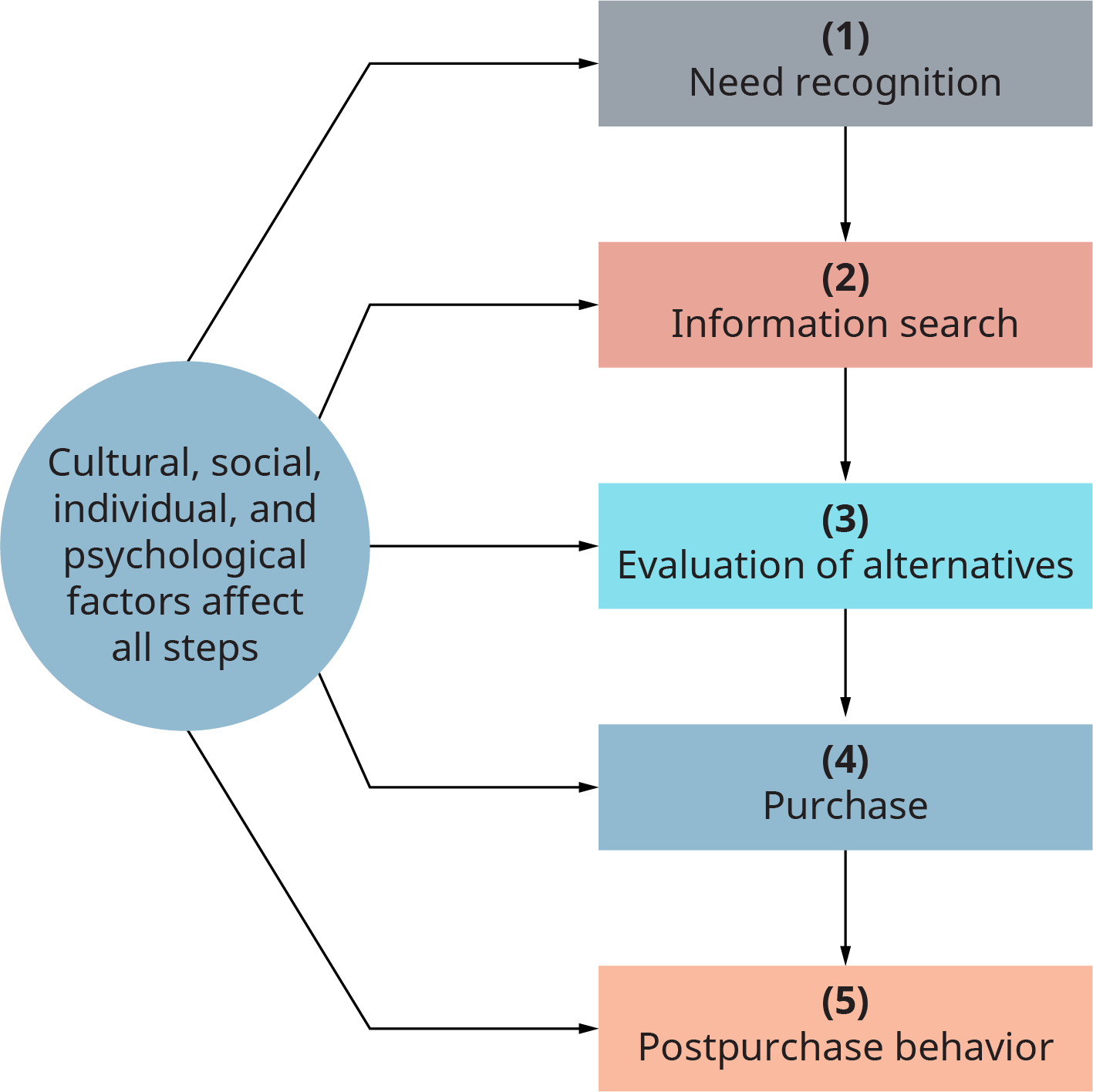 A circle has arrows connecting to a 5 step process. The circle is labeled as follows. Cultural, social, individual, and psychological factors affect all steps. Each step flows into the next. Step 1, need recognition. Step 2, information search. Step 3, evaluation of alternatives. Step 4, purchase. Step 5, post purchase behavior.