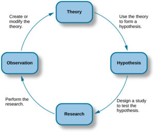 flowchart showing that a theory is used to form a hypothesis, the hypothesis leads to research, research leads to observation, which leads to the creation or modification of a theory, then back around.