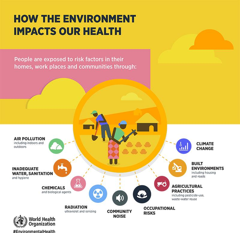 "Infographic on ""How the Environment Impacts Our Health"" from the World Health Organization."