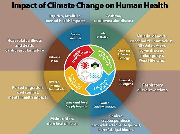 Infographic on the Impact of Climate Change on Human Health from the CDC.