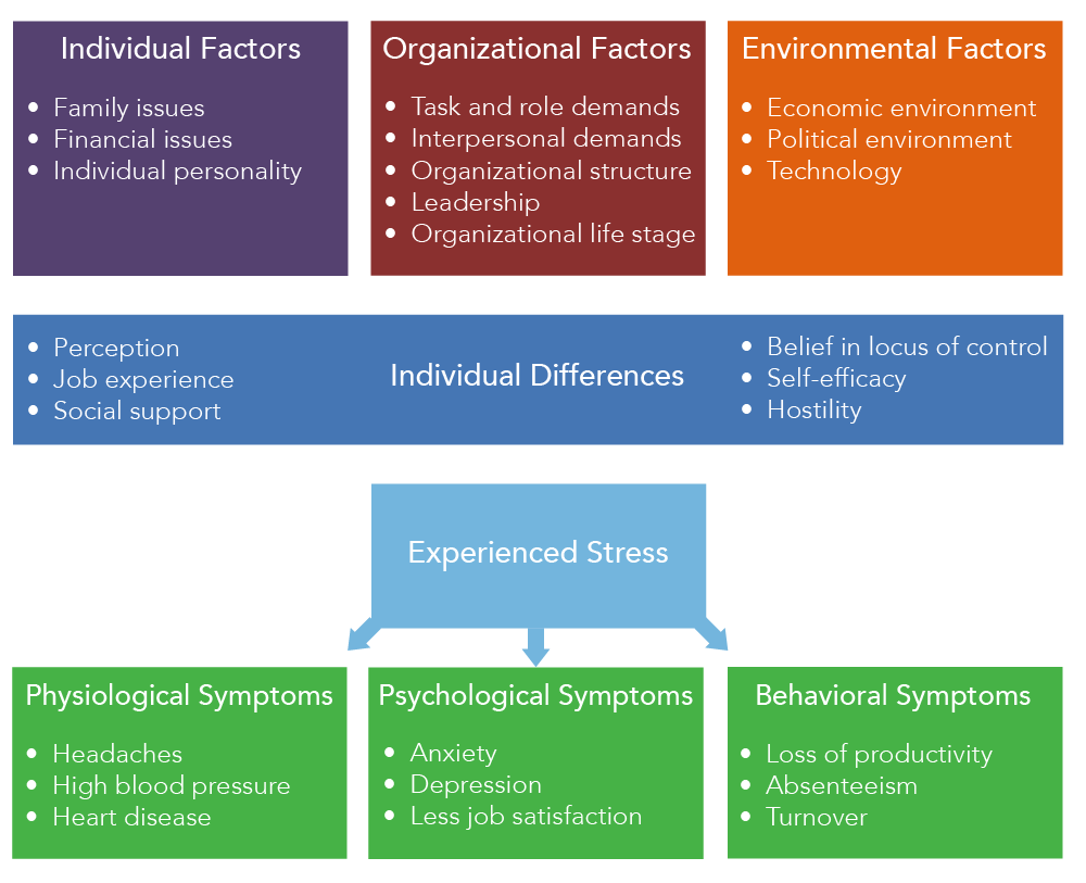 Chart mapping out the various factors of stress, individual differences, and how people experience stress. There are three types of factors of stress: Individual, Organizational, and Environmental. The individual factors of stress listed are family issues, financial issues, and individual personality. The organizational factors of stress listed are task and role demands, interpersonal demands, organizational structure, leadership, and organizational life stage. The environmental factors of stress listed are economic environment, political environment, and technology. The chart then lists individual differences, which impact how people experience stress. These differences are perception, job experience, social support, belief in locus of control, self-efficacy, and hostility. The chart then maps out different symptoms of stress, which are separated into three categories: physiological symptoms, psychological symptoms, and behavioral symptoms. The physiological symptoms of stress listed are headaches, high blood pressure, and heart disease. The psychological symptoms of stress listed are anxiety, depression, and less job satisfaction. The behavioral symptoms of stress listed are loss of productivity, absenteeism, and turnover.