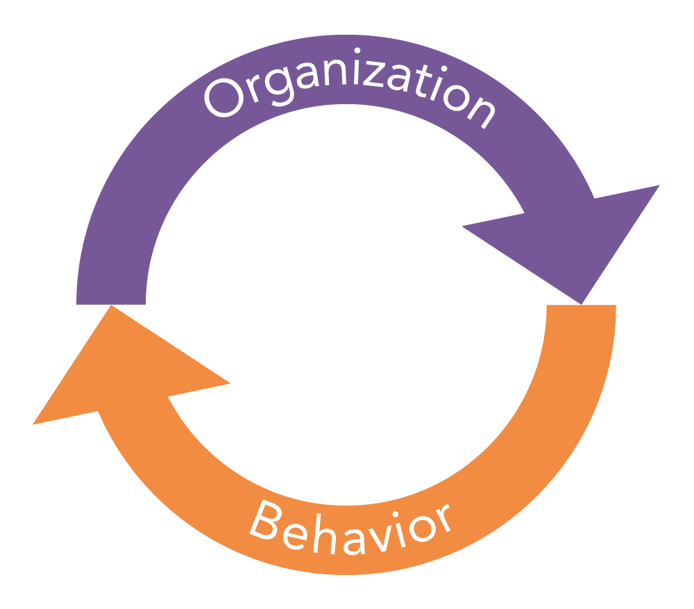A loop indicating that the organization affects behavior and behavior affects the organization