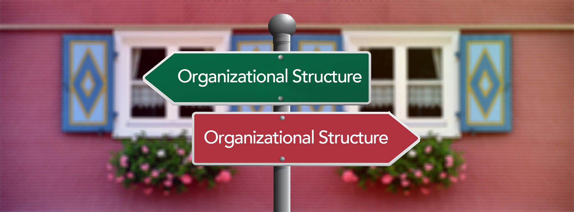 "A sign post with two signs pointing in opposite directions. Each sign reads ""Organizational Structure"""