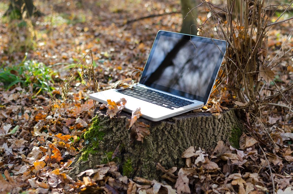 Photograph of a laptop sitting on a tree stump in the middle of the woods.