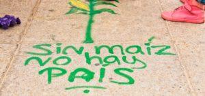 Writing on the sidewalk reads: Sin maíz no hay pais.