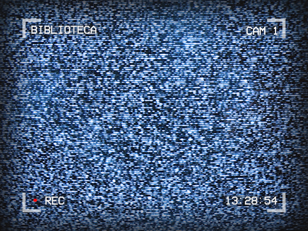 Photo of TV static. Text on the edges of the image reads: Biblioteca, Cam 1, 13:28:54