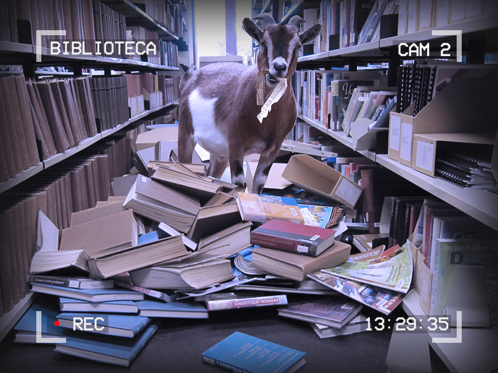 Image of a goat standing on a pile of books in the library stacks. The goat is eating a book. Text around the edges of the image reads: Biblioteca, Cam 2, 13:29:35