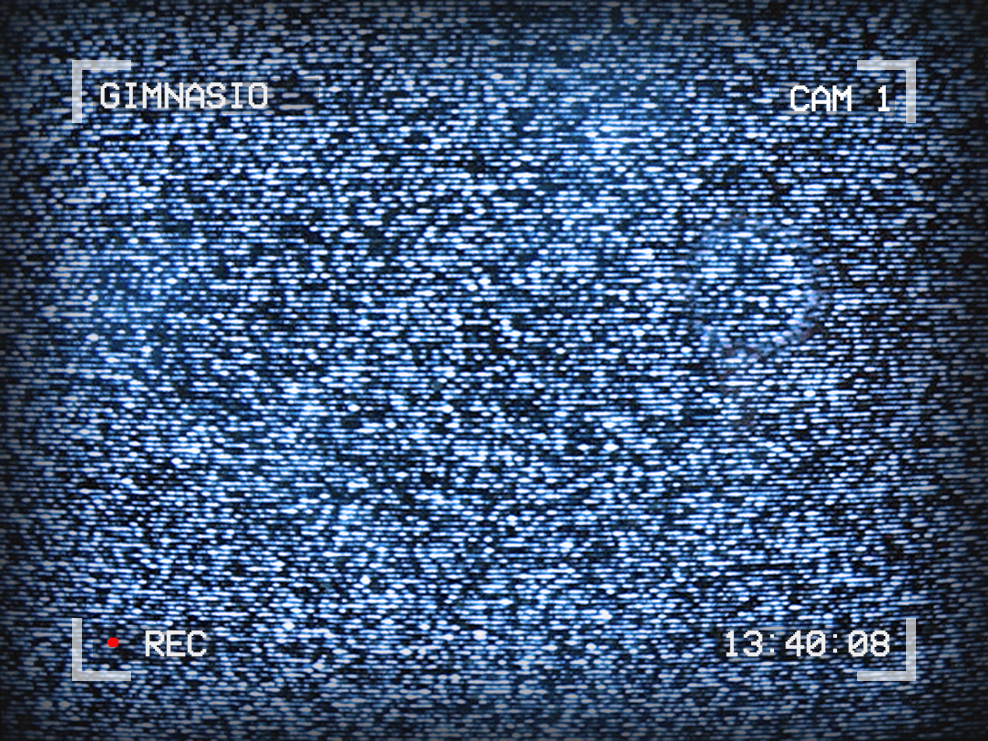 Image of TV static. Text around the edges reads: Gimnasio, Cam 1, 13:40:08. A red dot shows that the camera is recording.