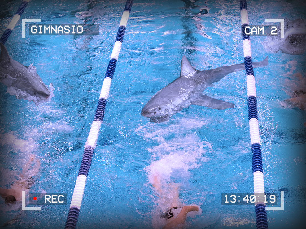 Photo of people swimming in a pool. There are sharks in the pool. Text around the edges reads: Gimnasio, Cam 2, 13:40:19. A red dot signifies recording.