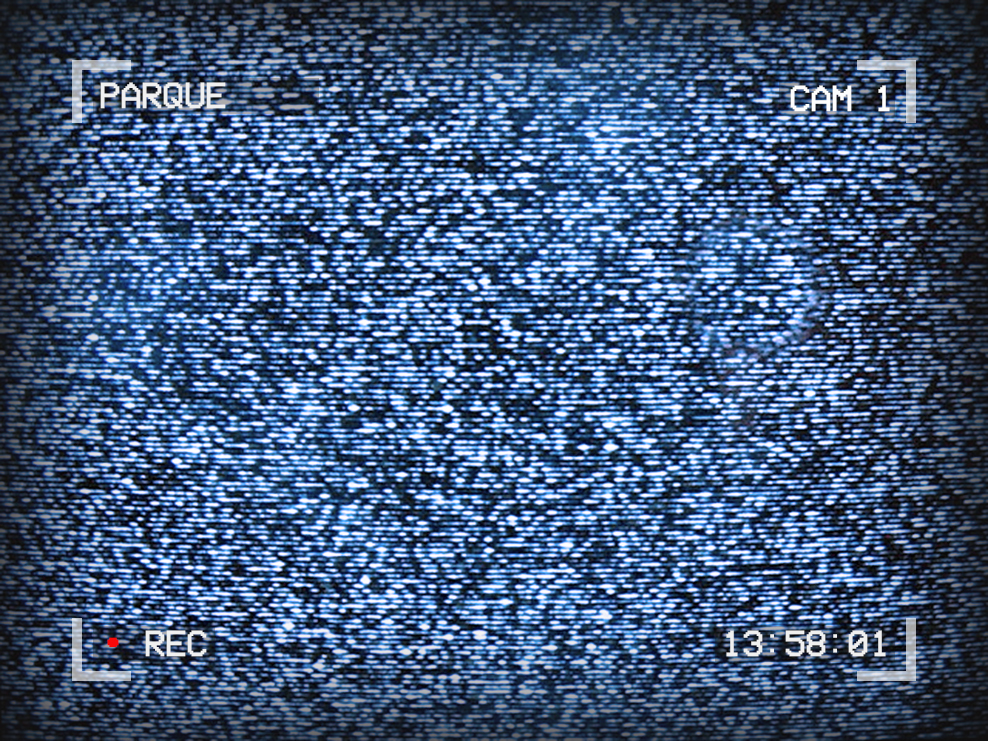 Image of TV static. Text around the outside reads: Parque, Cam 1, 13:58:01, recording