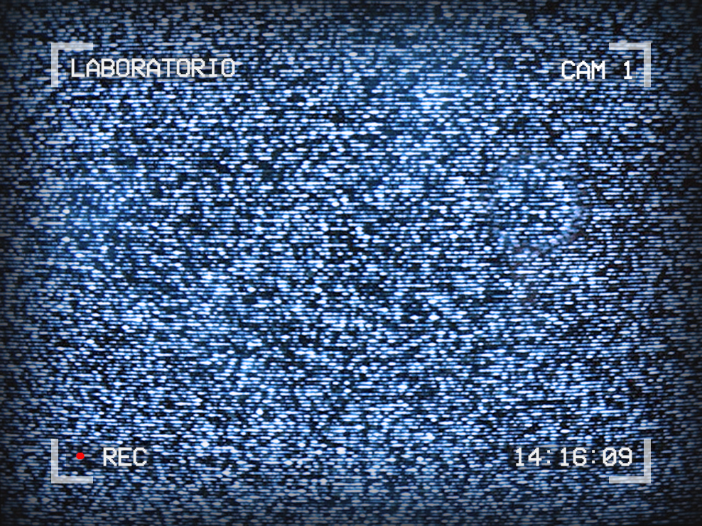 Image of TV static. Text around the outside reads: Laboratorio, Cam 1, 14:16:09, Recording