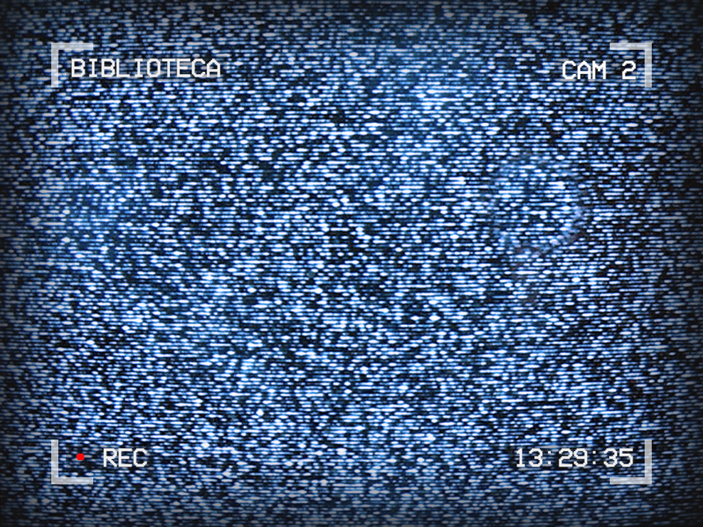 Image of TV static. Text around the outside reads: Biblioteca, Cam 2, 13:29:35, Recording