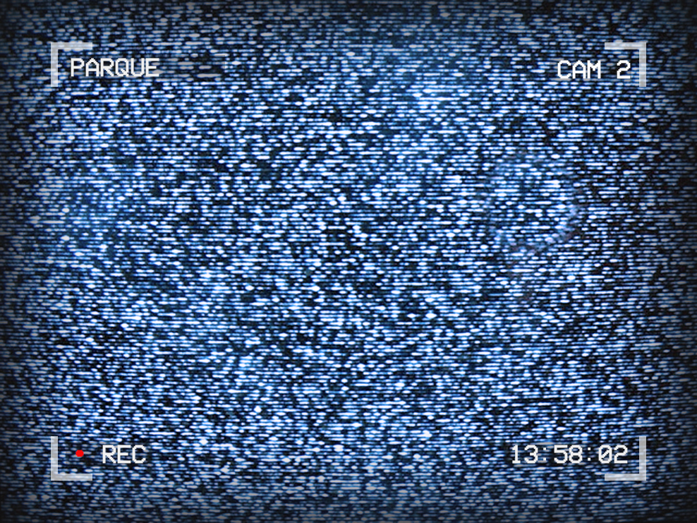 Image of TV static. Text around the outside reads: Parque, Cam 2, 13:58:02, Recording