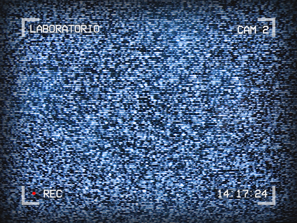 Image of TV static. Text around the outside reads: Laboratorio, Cam 2, 14:17:24, Rec