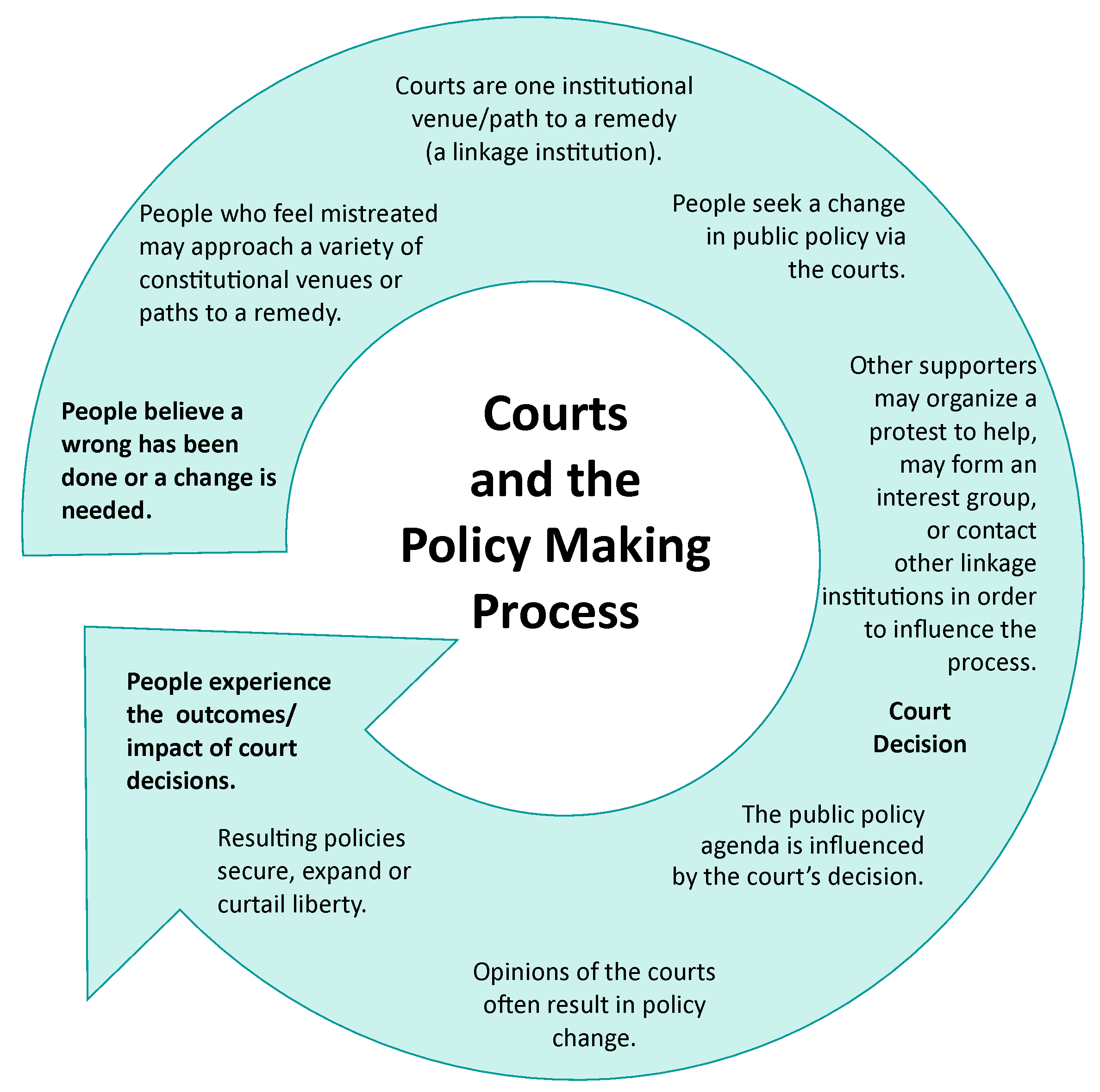 Chart illustrating how the courts are part of the policy making process and can help individuals who are not heard by other branches of government.