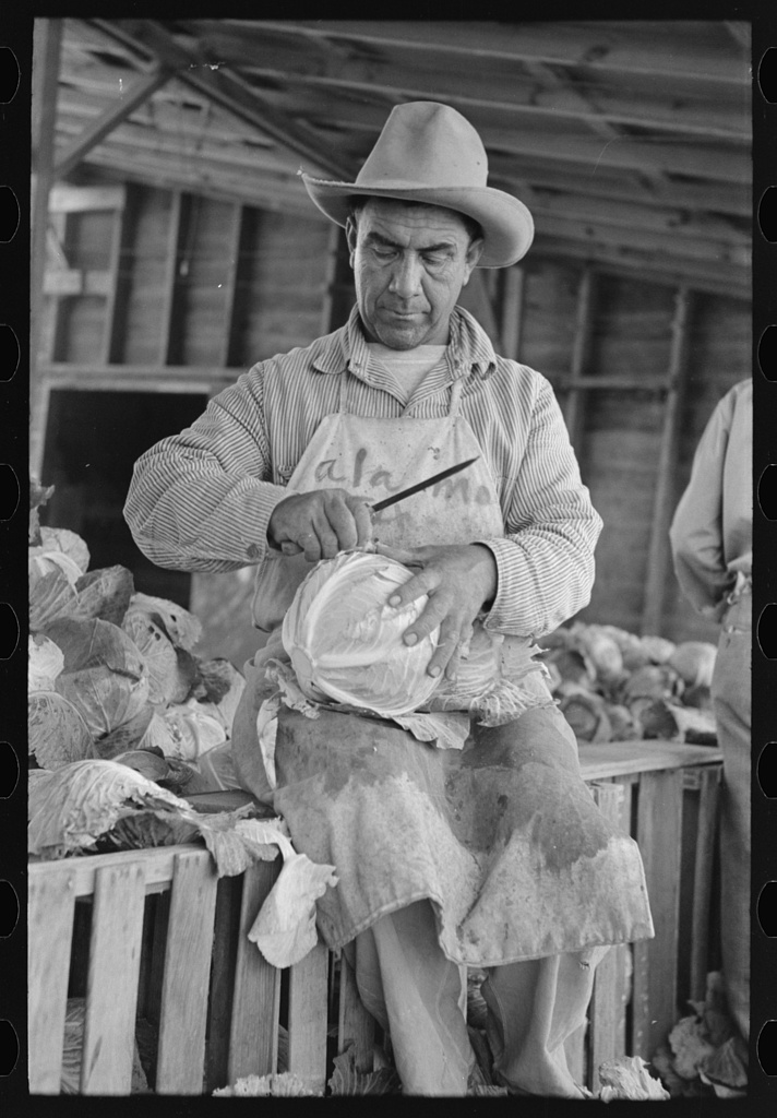 Mexican cabbage packer, Alamo, Texas by Russell Lee, 1903-1986, photographer, 1939; Farm Security Administration - Office of War Information Photograph Collection; Library of Congress Prints and Photographs Division Washington, DC 20540 USA http://hdl.loc.gov/ loc.pnp/pp.print.