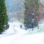 it snows / it is snowy