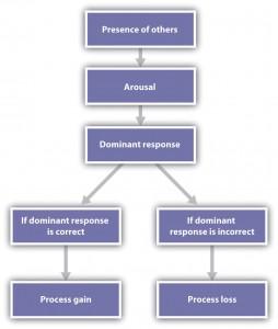 Figure 10.5 Explaining Social Facilitation and Social Inhibition