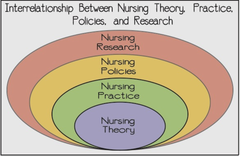 interrelationship between nursing theory, practice, policy, and research